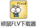 硕鼠FLV下载器 0.4.8