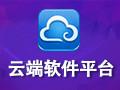 云端软件平台 绿色版